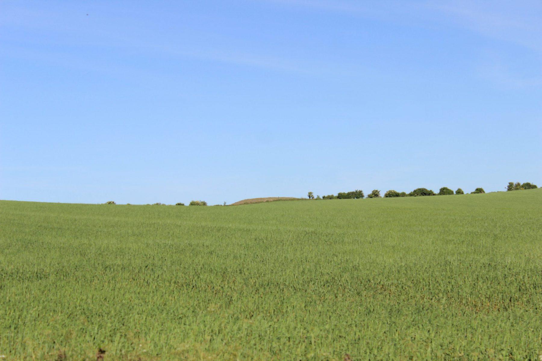 Long Barrow
