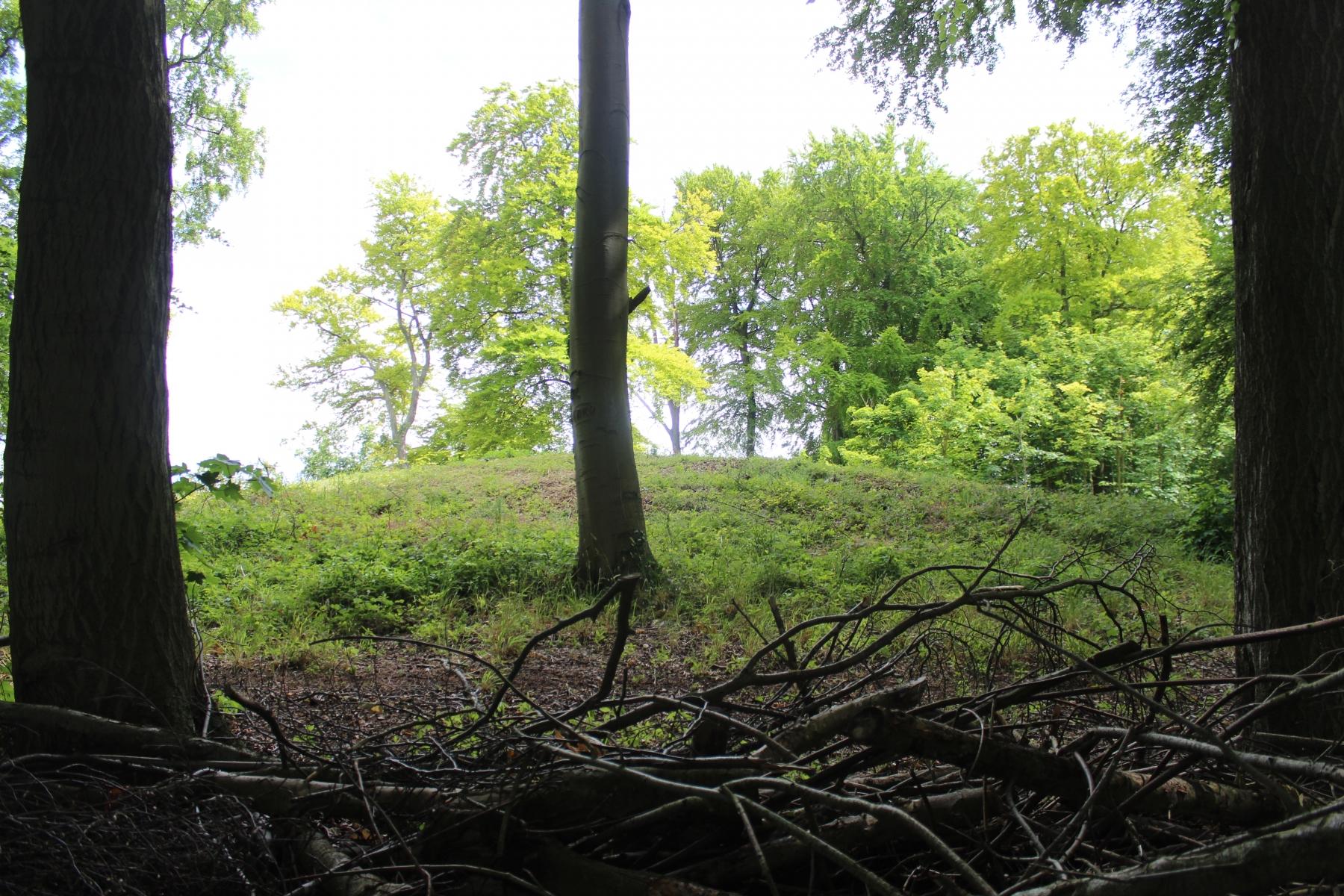 Tingley Round Barrow (Tumulus)