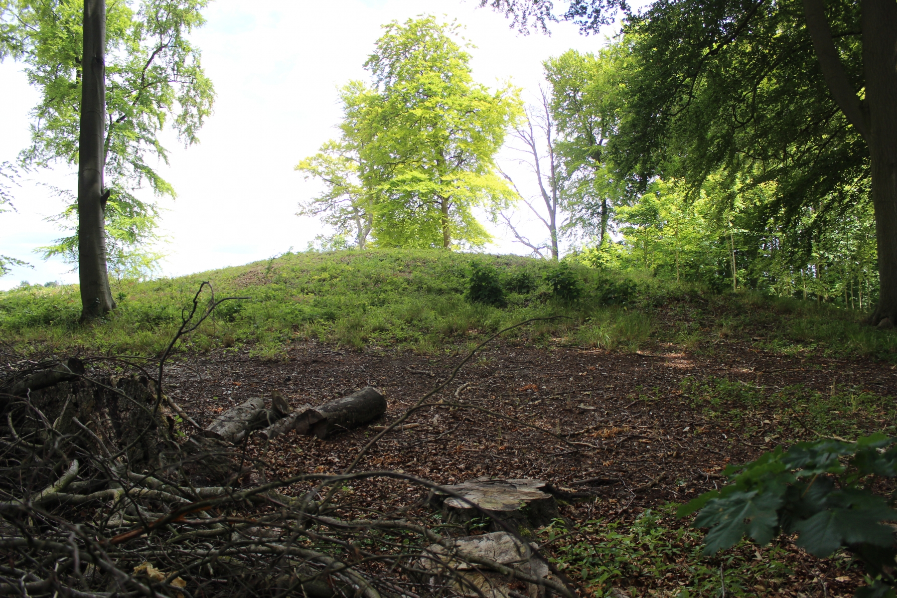Tingley Round Barrow (Tumulus)1