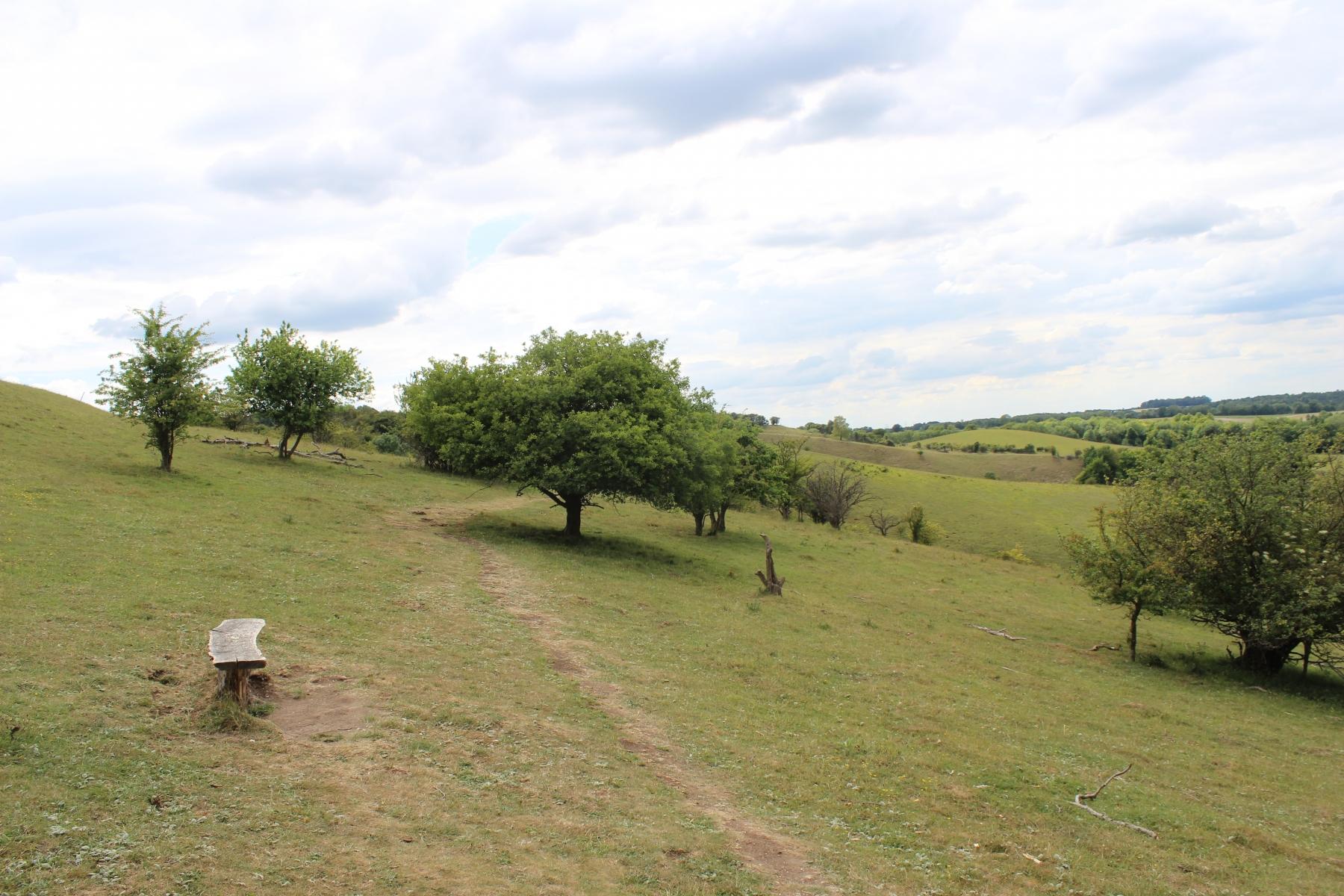 Pegsdon Hills1