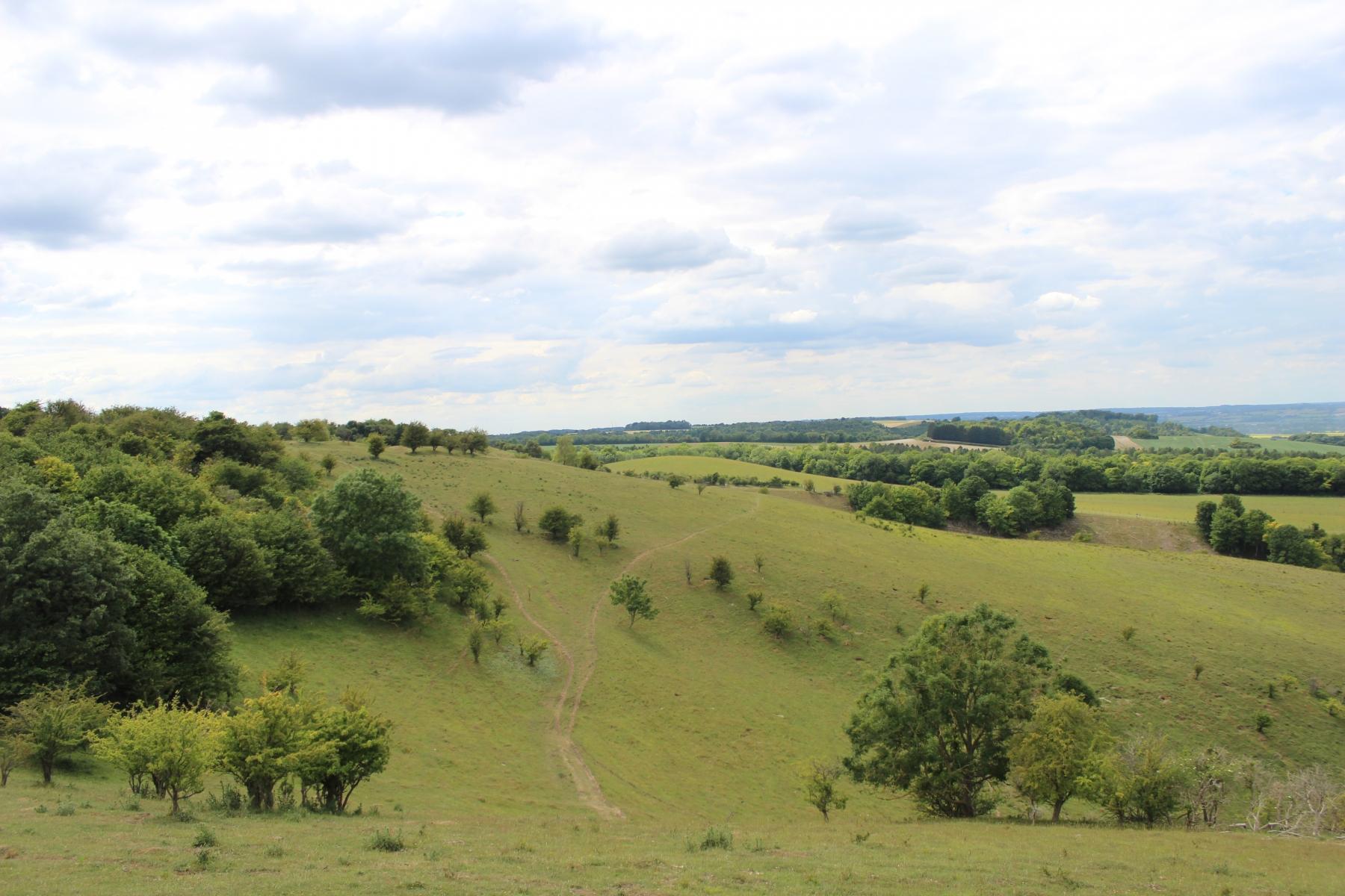Pegsdon Hill2