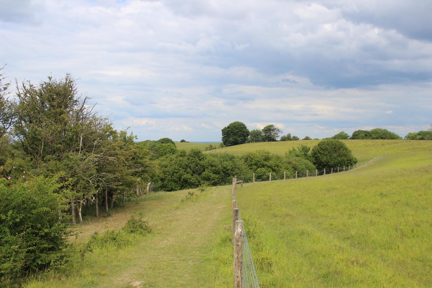 Pegsdon Hill3
