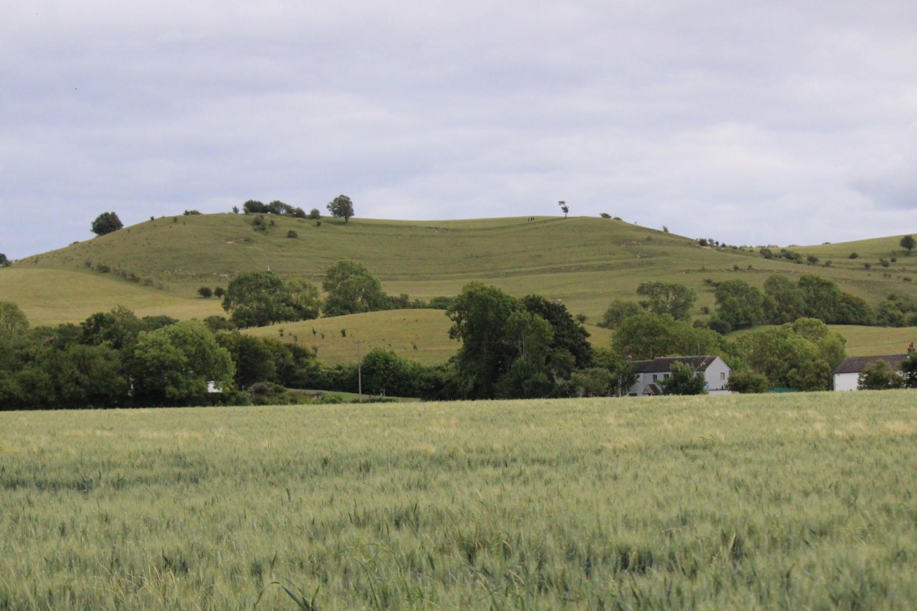Pegsdon