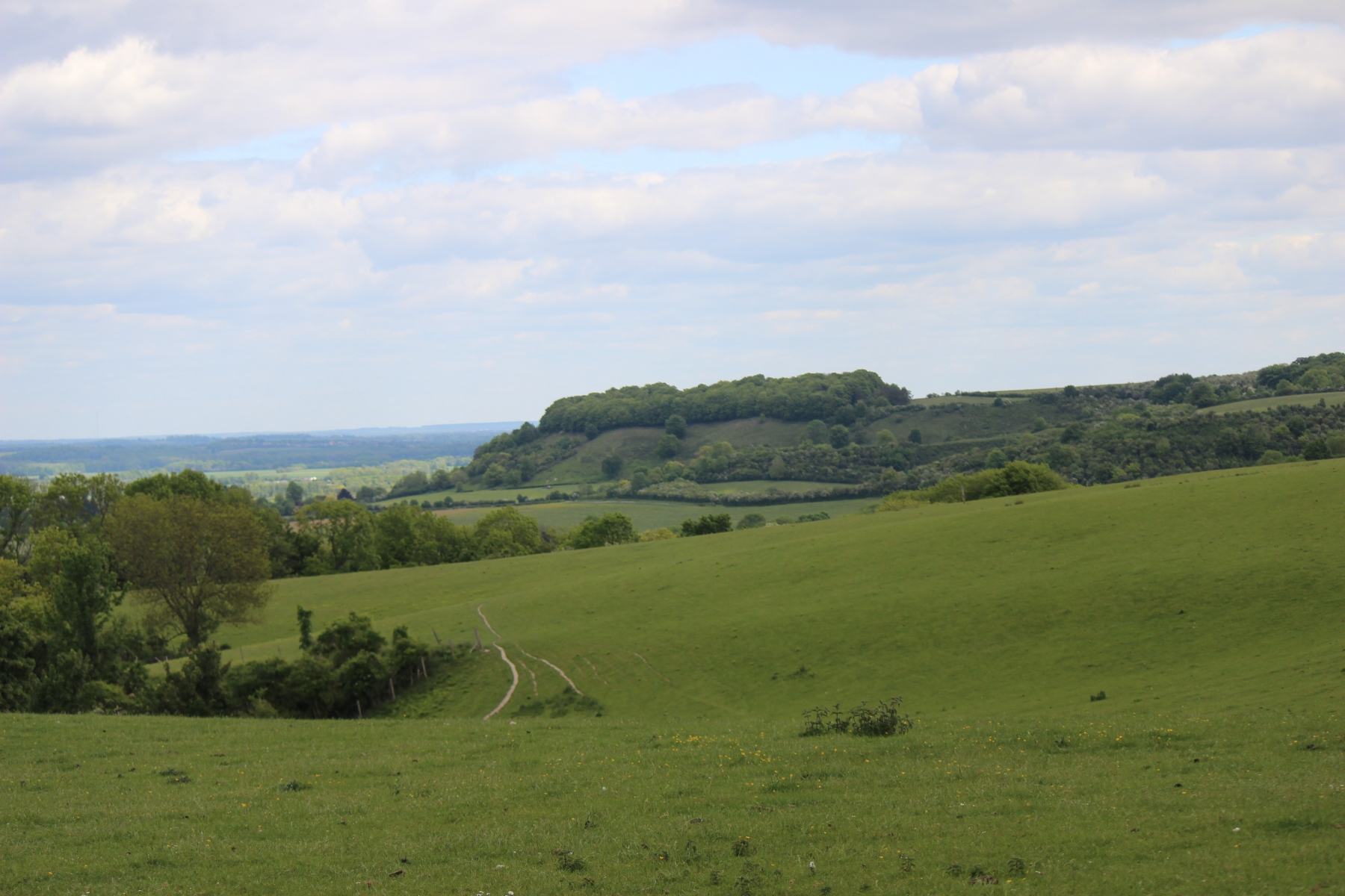 Sharpenhoe-from-Country-Park