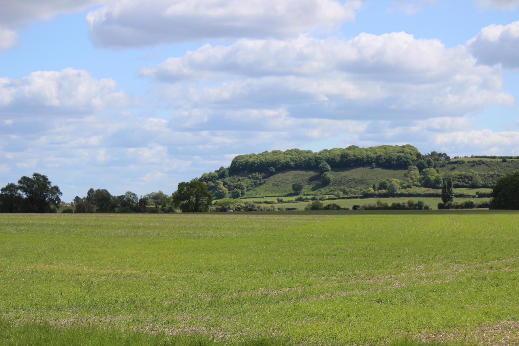 Sharpenhoe-from-West