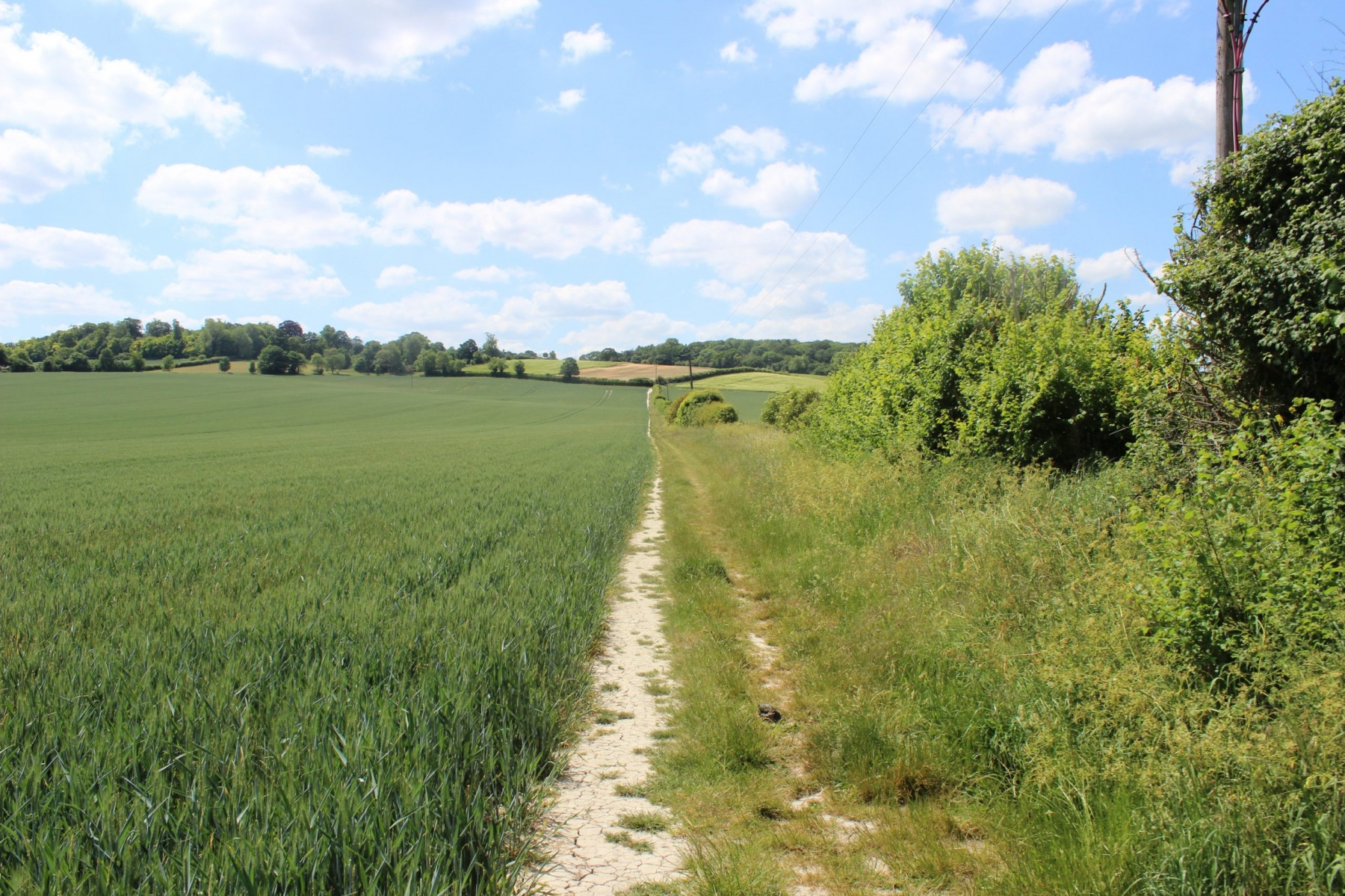 Path towards Pegsdon outside Pirton